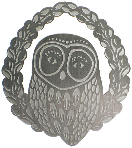 Hoot Stainles Steel Brooch by Polli