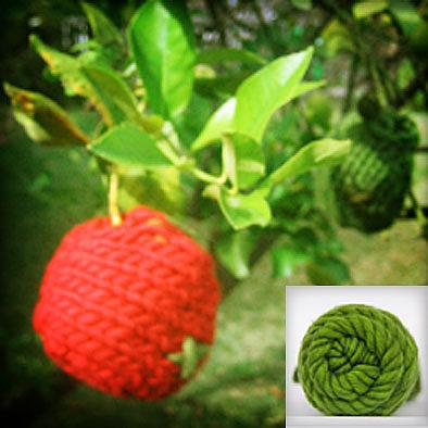 Apple Cosy Knitting Kit - Granny Smith by KnitKnit